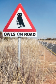 Owls on Road, Warning Sign, South Africa