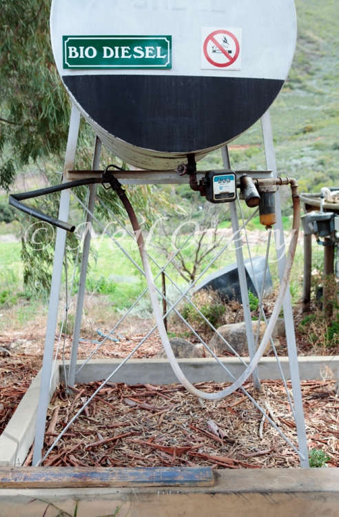 Bio-Diesel at Organic Fruit Farm, Robertson, Western Cape, South Africa