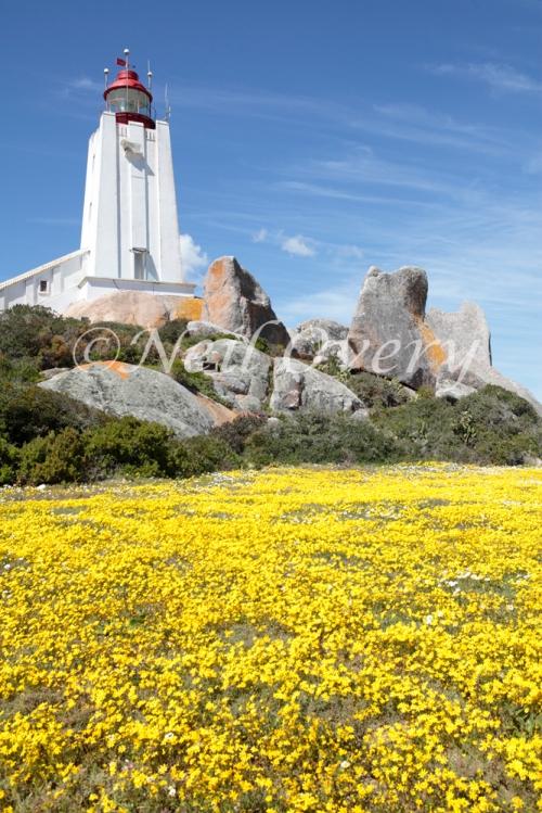 Cape Columbine Lighthouse, South Africa