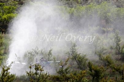 Organic Farm using organic substances for pest control, Western Cape, South Africa