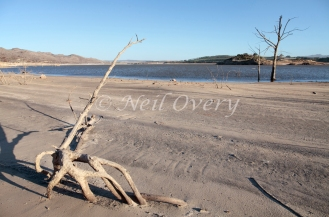 Theewaterskloof Dam is an earth-fill type dam located on the Sonderend River near Villiersdorp, Western Cape, South Africa. Administratively it is located within Theewaterskloof Local Municipality. It was established in 1978 and forms a major component of the Western Cape Water Supply System. The dam mainly serves for municipal and industrial use as well as for irrigation purposes. Photographed at approximately 30% capacity after a sustained drought in the Western part of South Africa. Theewaterskloof Dam, nr Cape Town, South Africa