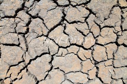 Drought stiken farming land nr Malmesbury, Western Cape, South Africa