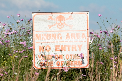 Coal mine warnign sign among flowers, pumalanga, South Africa. Despite commitments to rehabilitate mines, few mining housing bother, leaving communities to deal with all the health and safety problems they pose.