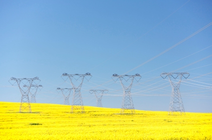 Power lines and rapeseed oil plants, Western Cape, South Africa