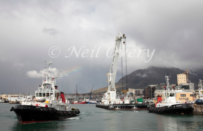 Tug Boats at the Victoria and Alfred Docks, Cape Tow, South Africa