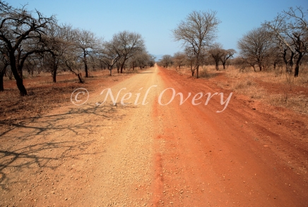 Unmade Dirt Road, Pongola Game Reserve, Pongola, Kwa-Zulu Natal, South Africa