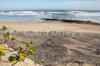 Titanium deposits in sand, nr Morgans Bay, Wild Coast, Eastern Cape, South Africa