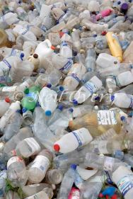Plastic bottles meant for recycling, Grahamstown, Eastern Cape, South Africa