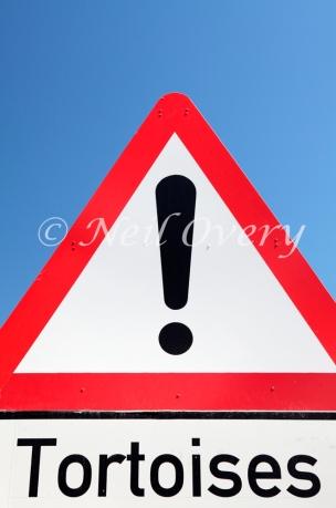 Tortioses Warning Road Sign, nr Oudtshoorn, Western Cape, South Africa